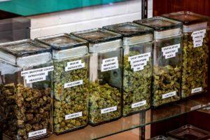 GreenRiNo Dispensary Craft Cannabis